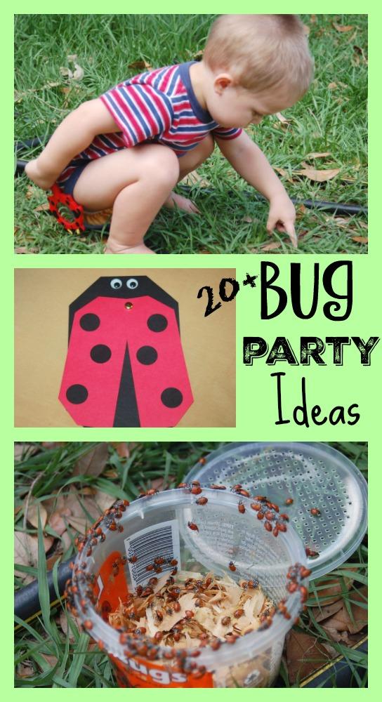 Bug Birthday Party Ideas