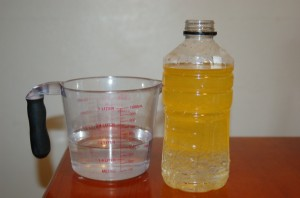 """Make Your Own """"Lava Lamp"""" Science Experiment"""