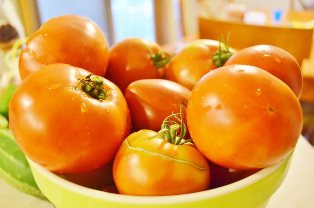 Fresh Tomatoes for DIY Homemade Spaghetti Sauce Canning Recipe