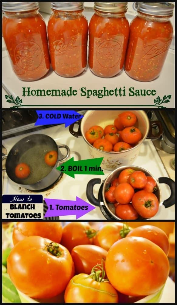 Fresh Homemade Spaghetti Sauce Canning Recipe