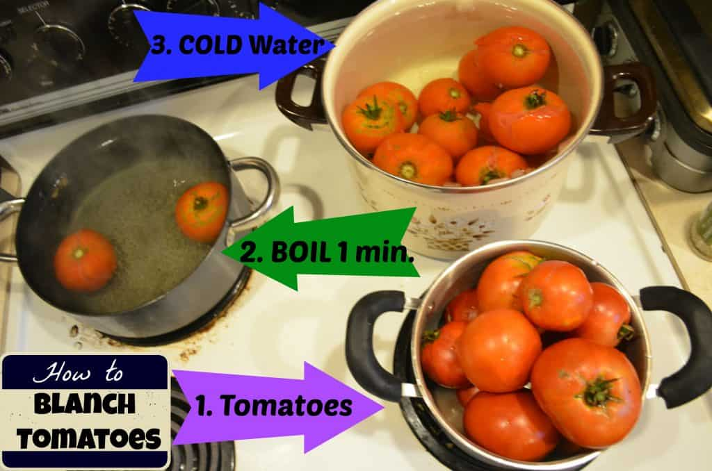 How to Blanch Tomatoes for DIY Homemade Spaghetti Sauce Canning Recipe