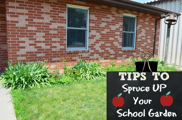 5 Ideas on How to Spruce up your School Garden Surviving
