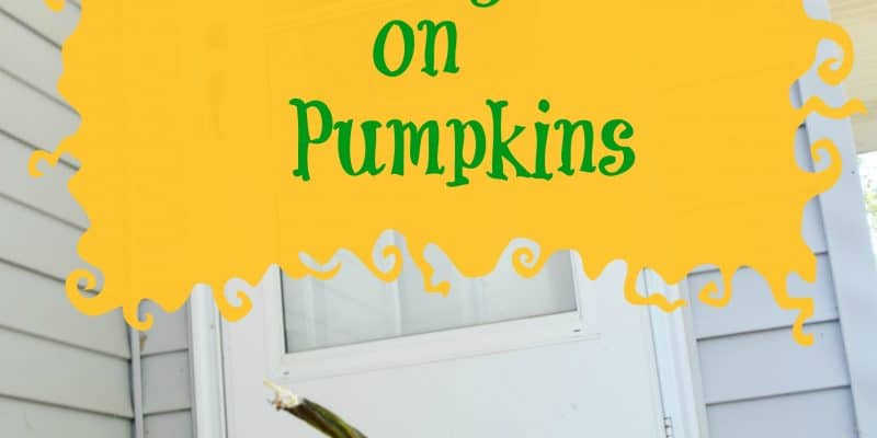 Decorating Leaves on Pumpkins Activity