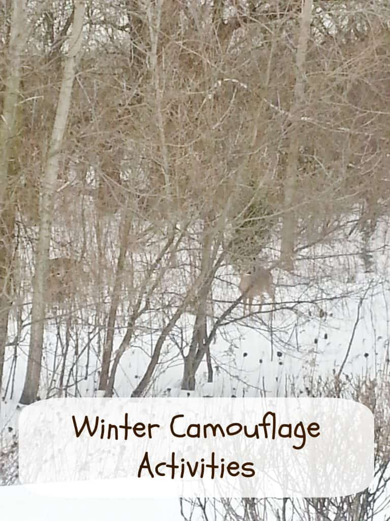 winter camouflage activities for kids