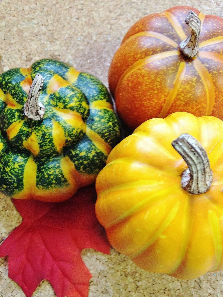 gourd fall DIY home decor