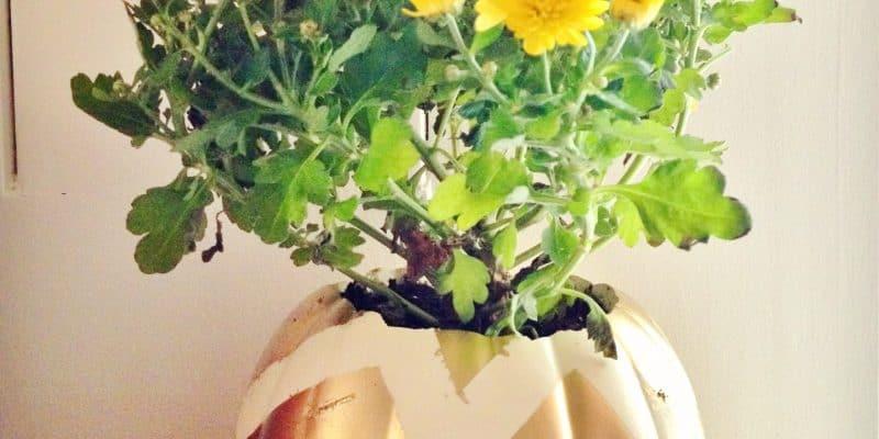 Chevron Pumpkin Planter Frugal Fall Home Decor Craft