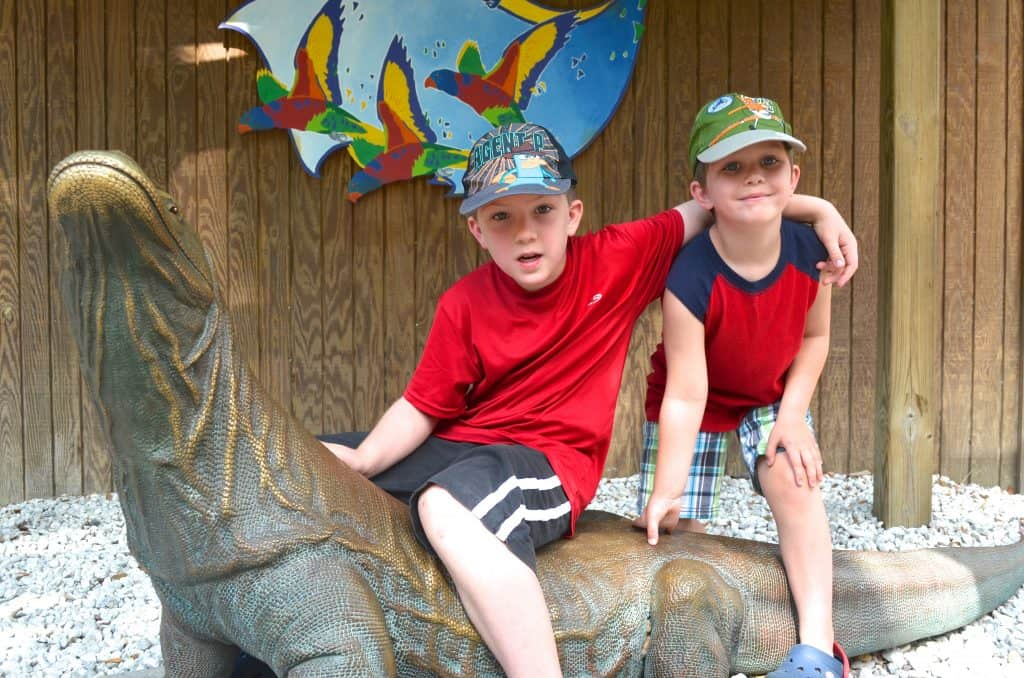 Lowry Park Zoo for Kids Tampa Florida
