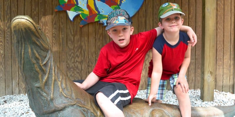 Lowry Park Zoo – my #1 Choice for Kid's Travel