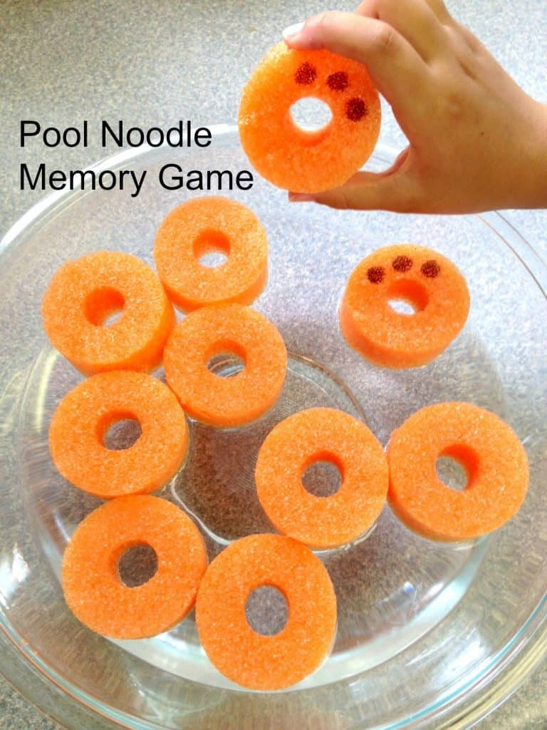 Pool Noodle Memory Game