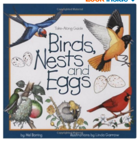 Birds, Nests and Eggs Guide Book for Kids