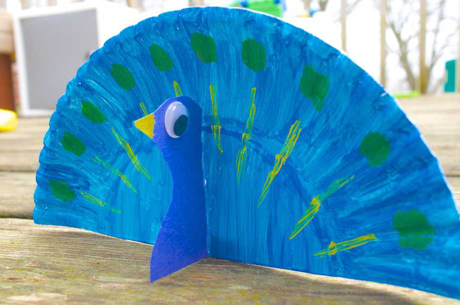 essays on peacock for kids Scientific name: pavo cristatus introduction: the peacock is one of the moist beautiful birds of this earth it is the national bird of india it has received this.
