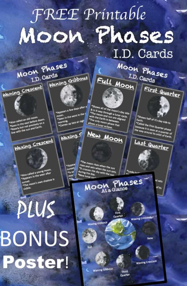 Free Printable Moon Phases Cards and Poster - perfect for homeschool and space solar system classroom school lessons