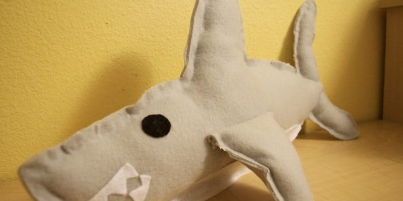 No Sew Shark Plush Toy Tutorial with Printable Template