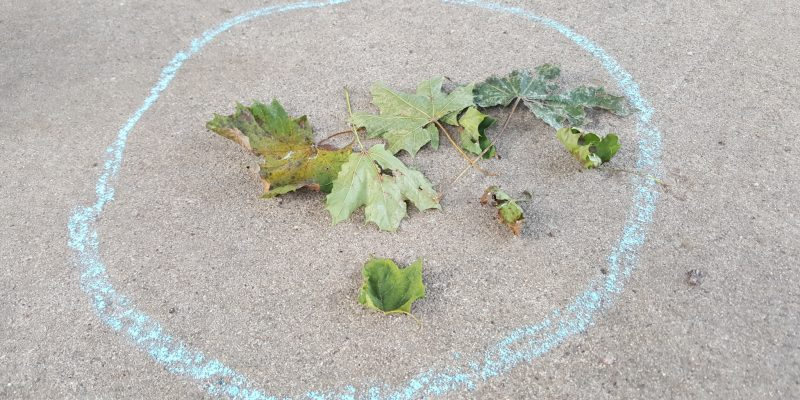 Colors & Shapes Nature Scavenger Hunt for Toddlers