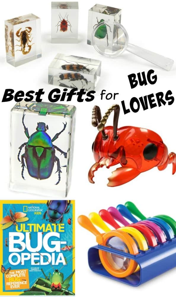 Best Gifts for Bug Lovers