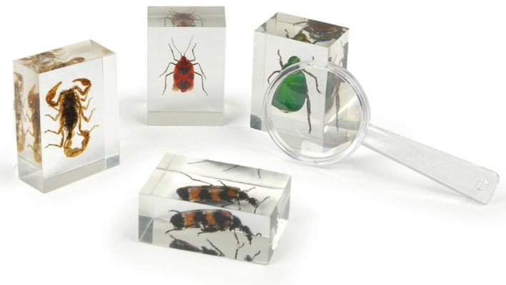 Holiday Gift Guide for the Kid Who Loves Bugs