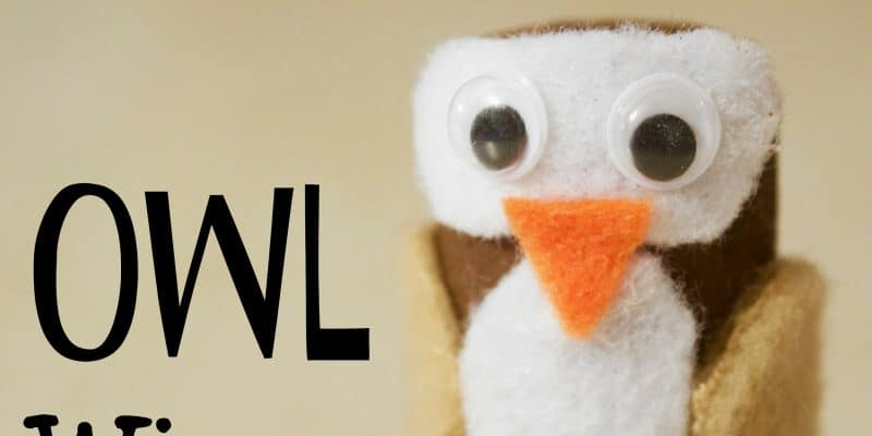 DIY Back to School Owl Wine Cork Craft for Classroom Management