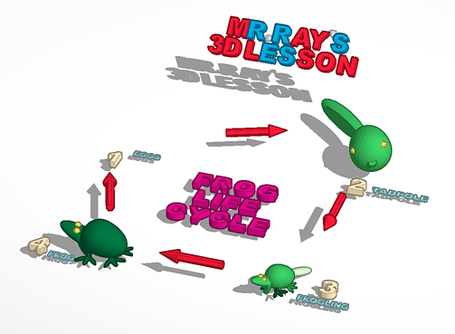 Frog Life Cycle 3D Printer File