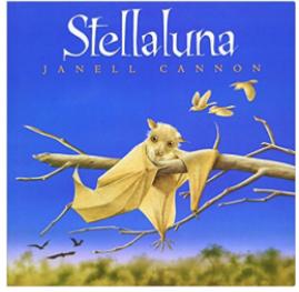 Stellaluna bat book for children