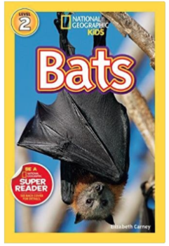 National Geographic Book about bats